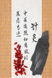 Chinese Acupuncture Medicine Royalty Free Stock Photo