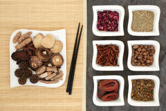 Chinese Alternative Medicine Stock Photography