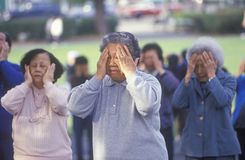 Chinese Americans practicing Tai Chi,. North Beach, Can Francisco, CA Royalty Free Stock Photos