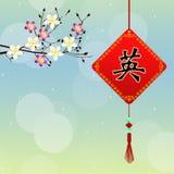 Chinese amulet Stock Image