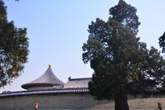 Chinese ancient architecture - Beijing Tiantan. China ancient buildings - Beijing Tiantan is the place where the emperors of the Qing Dynasty worship, pray for Stock Photo