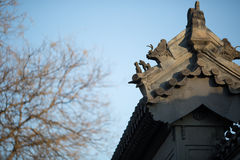 Chinese ancient buildings roof Stock Image