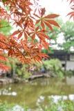 Chinese ancient garden with pond in spring,Suzhou,Jiangsu Stock Photo