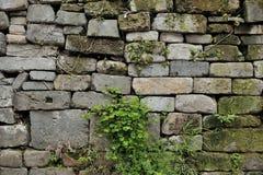 Chinese ancient wall Stock Photos