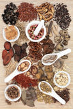 Chinese Apothecary Herbs Royalty Free Stock Photos