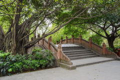 Chinese arch bridge and ancient trees in spring Stock Photo