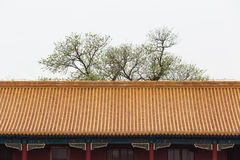 Chinese architecture Stock Images