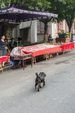 Chinese artist paints on the street Stock Images