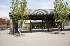 Chinese Asia, Beijing, Asia China, Beijing, Olympic Park, sinking, garden,The courtyard, Royalty Free Stock Photos