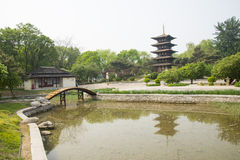 Chinese Asia, Beijing, the World Park,The gardening landscape,Miniature landscape, In Japan, wu chong tower Royalty Free Stock Photo