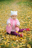 A chinese baby in autumn Royalty Free Stock Image