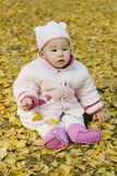 A chinese baby with autumn leaf Stock Images