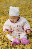 A chinese baby with autumn leaf. Sit on leaves Stock Images