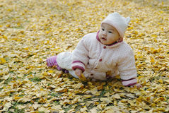 A chinese baby with autumn leaf Royalty Free Stock Photo