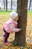 Chinese baby in autumn park Royalty Free Stock Photos