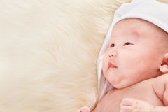 Chinese baby boy looking away Stock Image