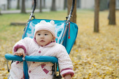 Chinese baby sitting in stroller Royalty Free Stock Image
