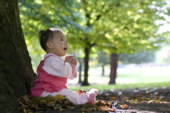 Chinese baby sitting under tree. A chinese baby sitting under tree in autumn Royalty Free Stock Image