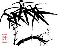 Chinese Bamboo. A , illustration for bamboo Royalty Free Stock Photos
