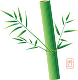 Chinese Bamboo. Bamboo tree silhouettes  illustration Royalty Free Stock Photography