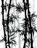 Chinese bamboo Royalty Free Stock Photos