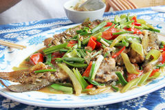 Chinese beerfish dish Stock Images