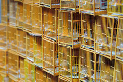 Chinese bird cage Stock Photography