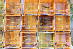 Chinese Bird Cage Stock Photo