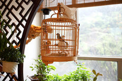 Chinese bird cages Royalty Free Stock Photos