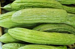 Chinese Bittere Meloen Royalty-vrije Stock Afbeeldingen