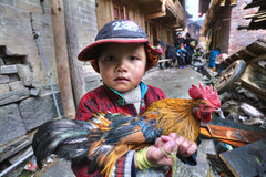 Chinese boy farmer is holding rooster bright, multi-color painti Stock Photos