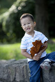 Chinese boy holding yellow plane leaf Royalty Free Stock Images