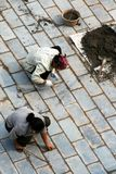 Chinese Bricklayers royalty free stock images