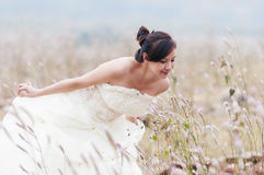 Chinese  bride on a field Royalty Free Stock Photo