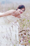 Chinese  bride on a field Royalty Free Stock Photography