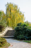 Chinese bridge and willow Royalty Free Stock Photography