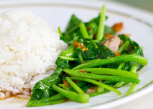 Chinese Broccoli Or Fried With Crispy Pork. Stock Photo