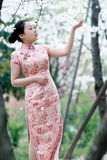 Chinese bruid in traditionele kleding openlucht Royalty-vrije Stock Foto