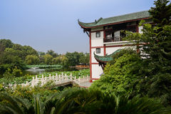 Chinese building by lake of lotuses in sunny summer Stock Photography