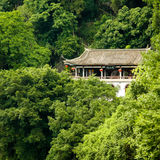 Chinese building in lush junlge Stock Photography