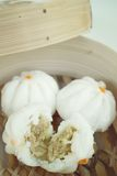 Chinese bun - dim sum Stock Image