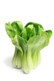 Chinese Cabbage. On White Background Stock Photo