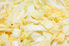 Chinese cabbage stock photo