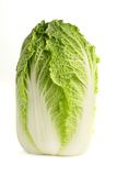 Chinese cabbage. A fresh, organic chinese cabbage, isolated on a white background Stock Image