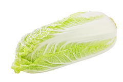The Chinese cabbage Royalty Free Stock Photo
