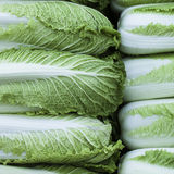 Chinese Cabbage. A pile of Chinese cabbages for sale at a market Stock Photos