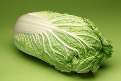 Chinese cabbage. Royalty Free Stock Image