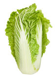 Chinese cabbage Stock Photography