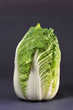 Chinese Cabbage. Fresh green chinese cabbage from the market Royalty Free Stock Photos