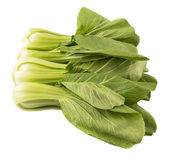 Chinese Cabbage Or Bok Choy IX Royalty Free Stock Images